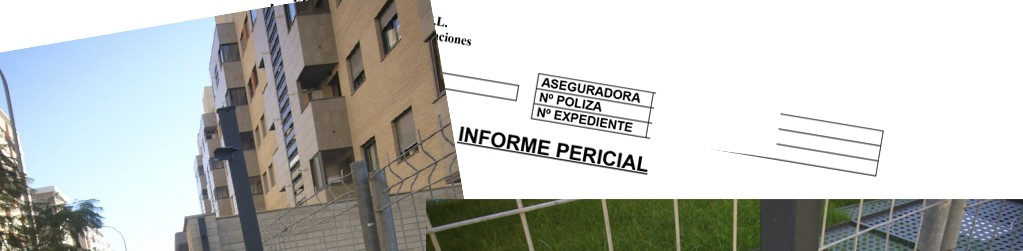 IMAGEN WEB - INFORME PERICIAL